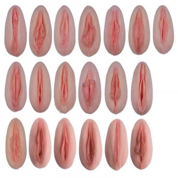 Different apperances of vagina